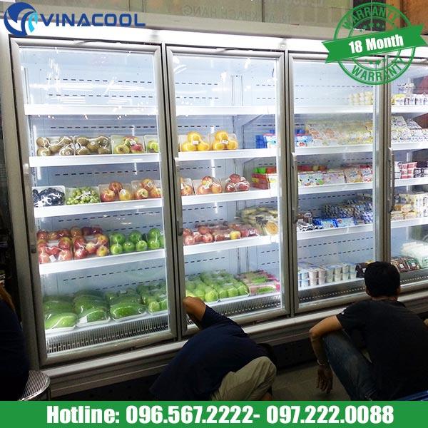 mua tủ bảo quản thực phẩm chất lượng tốt