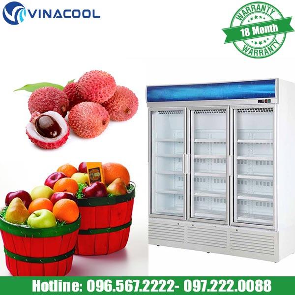 tủ bảo quản hoa quả Vinacool