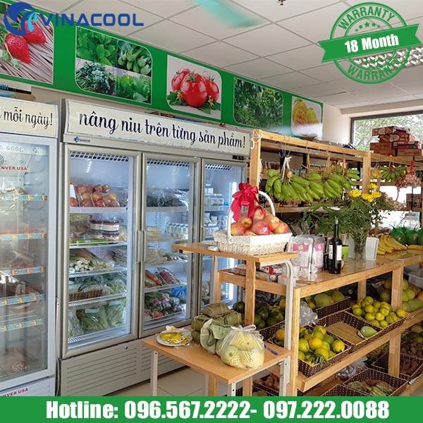 tủ mát trưng bày trái cây cho cửa hàng hoa quả nhập khẩu
