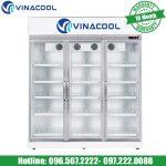 tủ trưng bày trái cây Vinacool SLG-1800FS