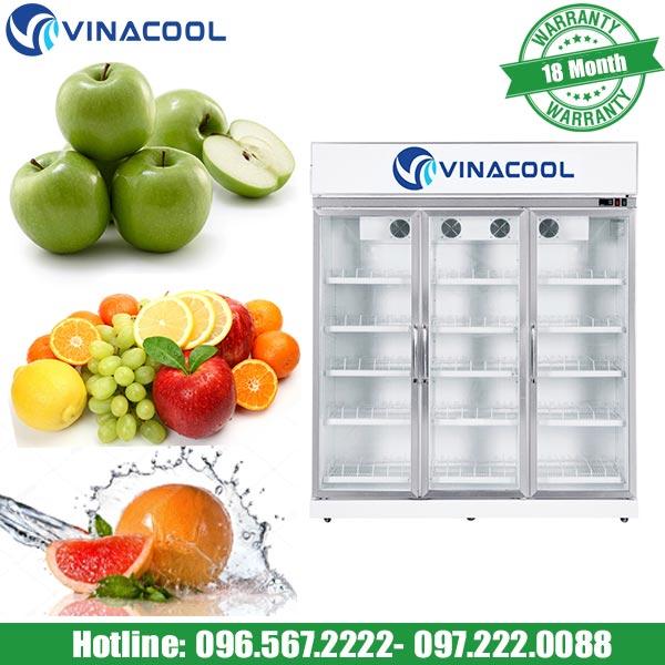 Tủ mát trưng bày trái cây SLG-1800FS