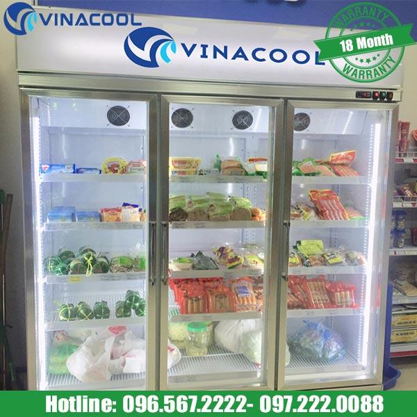 Tủ mát trưng bày trái cây SLG-1800FS Vinacool cao cấp
