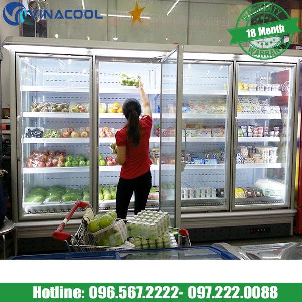 tủ trưng bày siêu thị có thể tháo dỡ Vinacool
