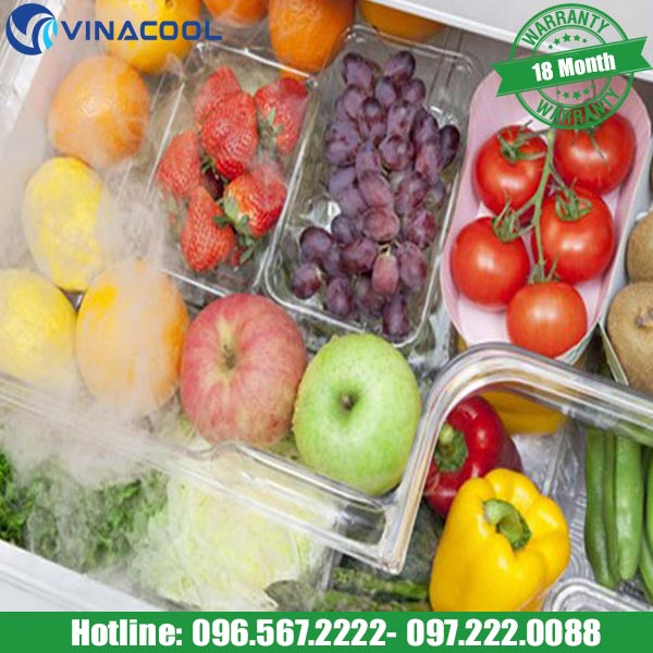 mẹo lưu giữ tủ hoa quả tươi trong tủ bảo quản hoa quả