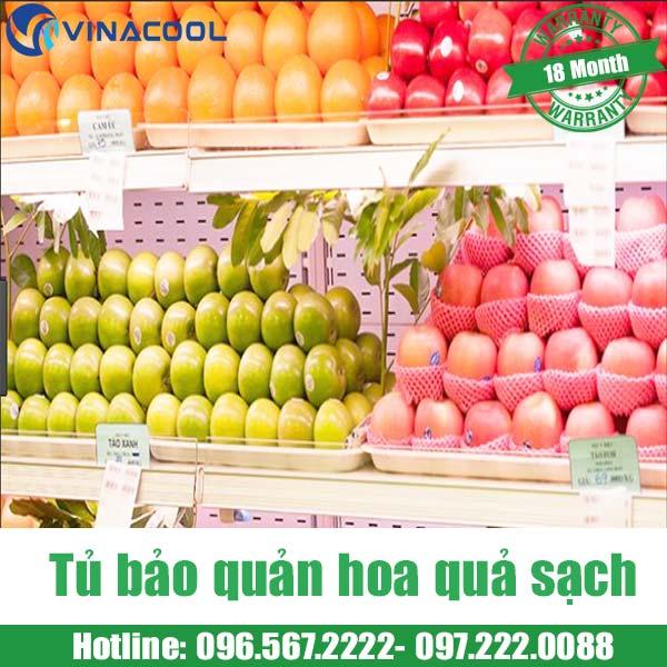 tủ bảo quản trái cây sạch