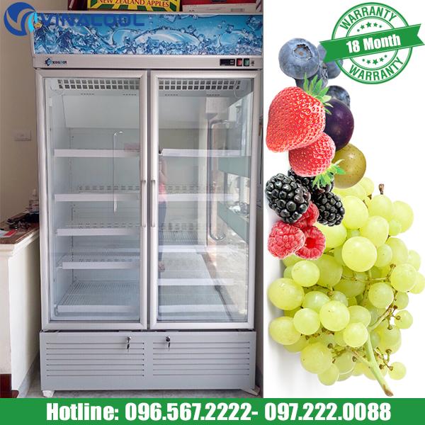 tủ bảo quản hoa quả Vinacool 2 cánh kính