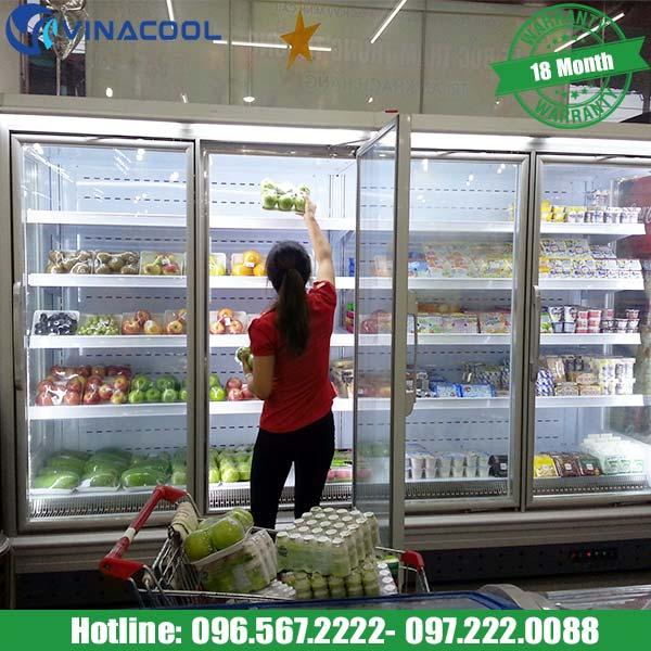 tủ làm mát rau củ quả Vinacool cao cấp