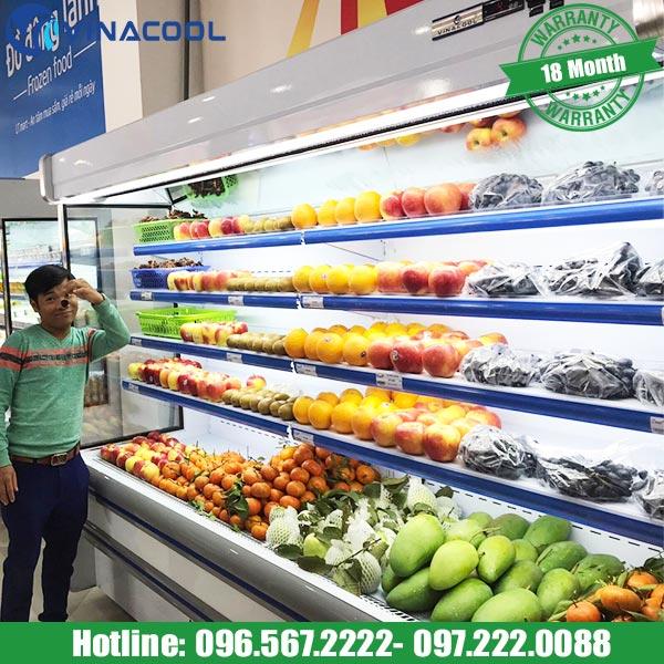 tủ mát đựng rau siêu thị Vinacool