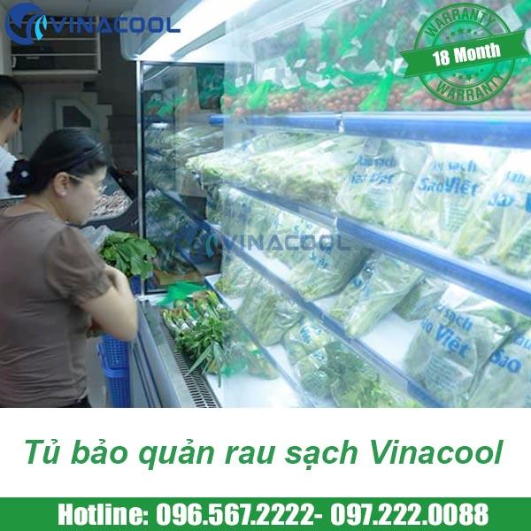 tủ bảo quản rau sạch Vinacool